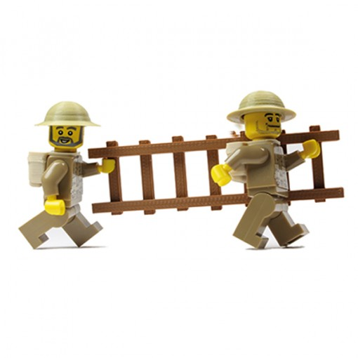 Trench ladder